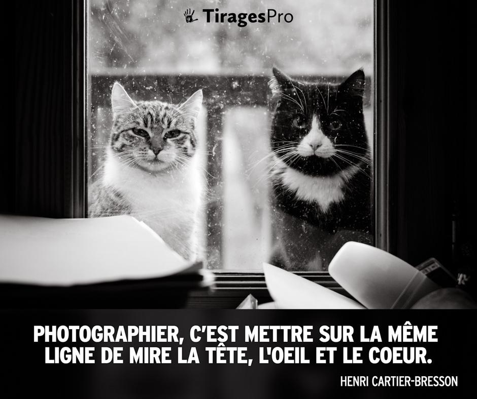 Henri Cartier Bresson - Photographier c'est mettre sur la même ligne de mire la tête, l'oeil et le coeur